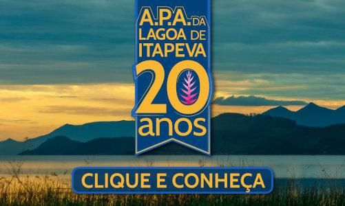 Logo A.P.A link